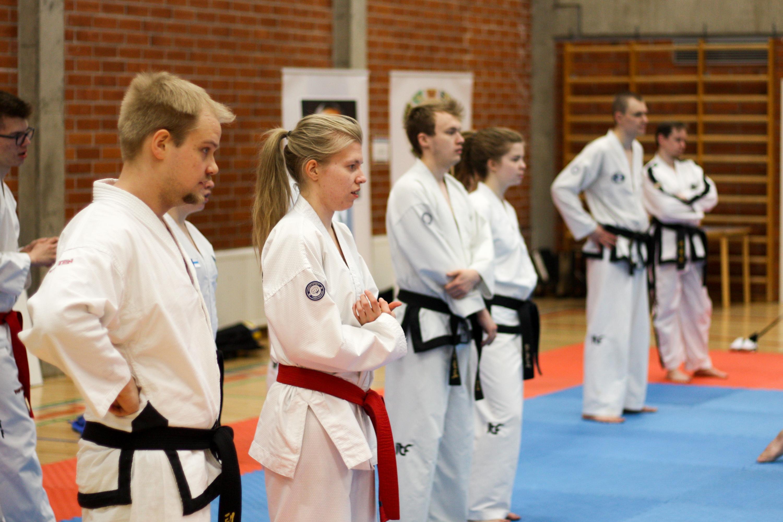 oulu-tkd-akatemia-kevatleiri2018-ari-kairala-030
