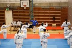 oulu-tkd-akatemia-kevatleiri2018-ari-kairala-025