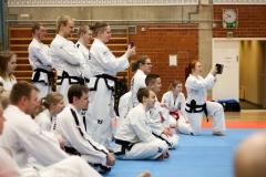 oulu-tkd-akatemia-kevatleiri2018-ari-kairala-034