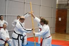 oulu-tkd-akatemia-kevatleiri2018-ari-kairala-004